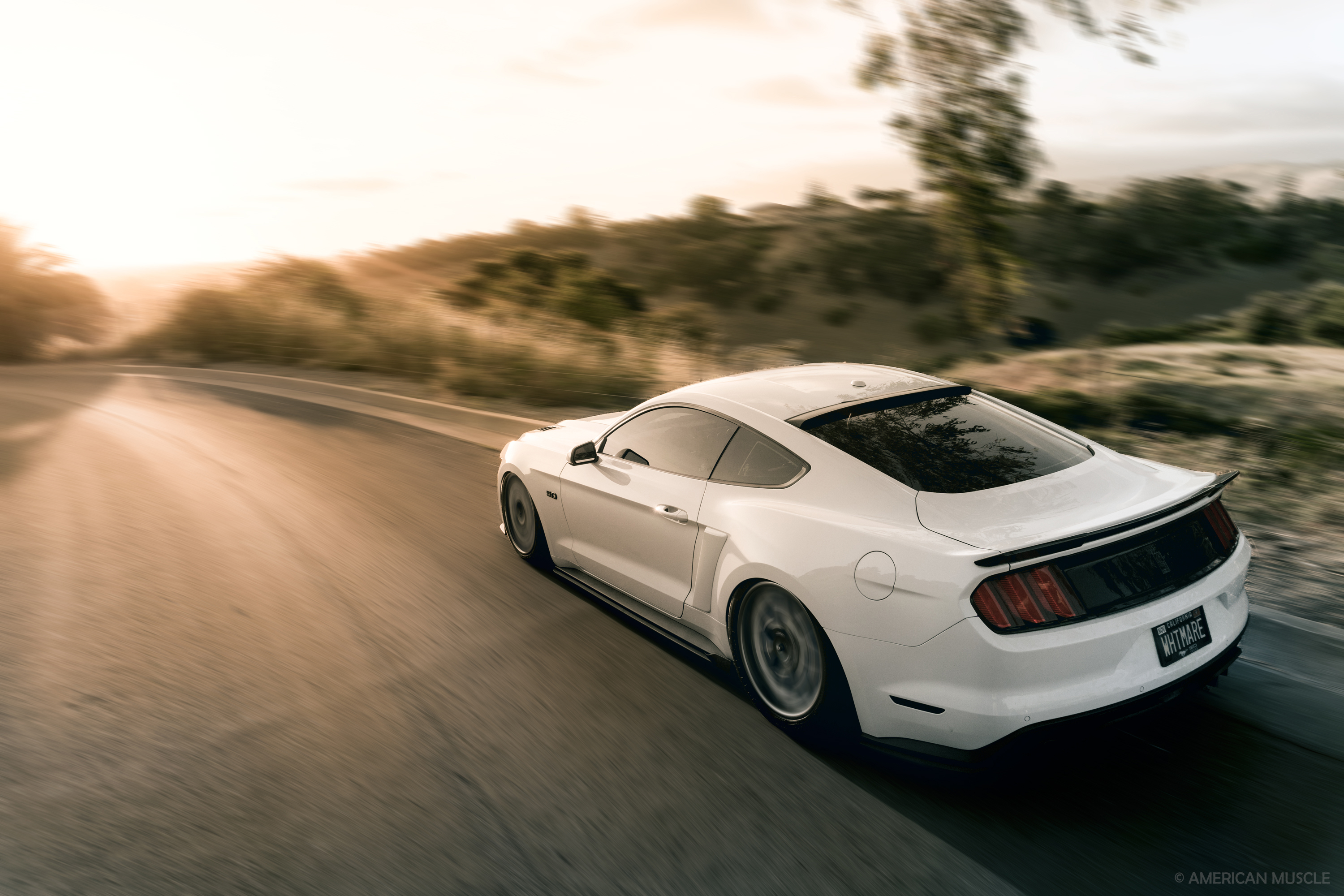 Photographer: Unlisted, Retoucher: Christopher String © AmericanMuscle
